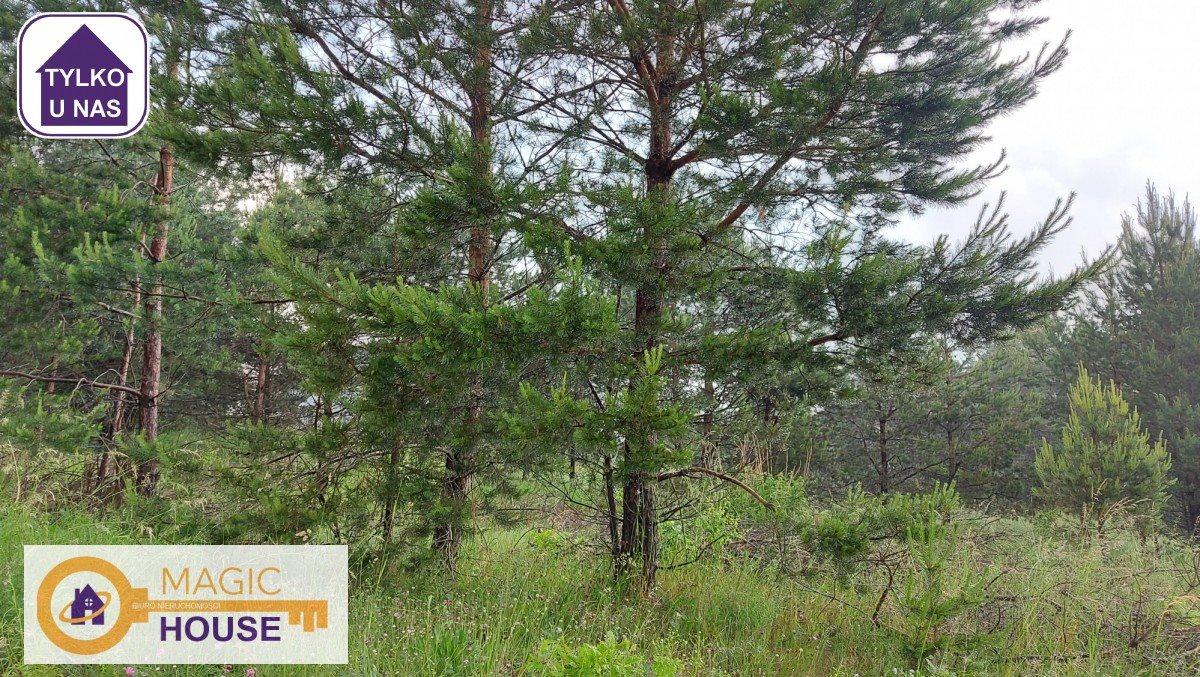 Działka leśna na sprzedaż Gołubie  18900m2 Foto 9