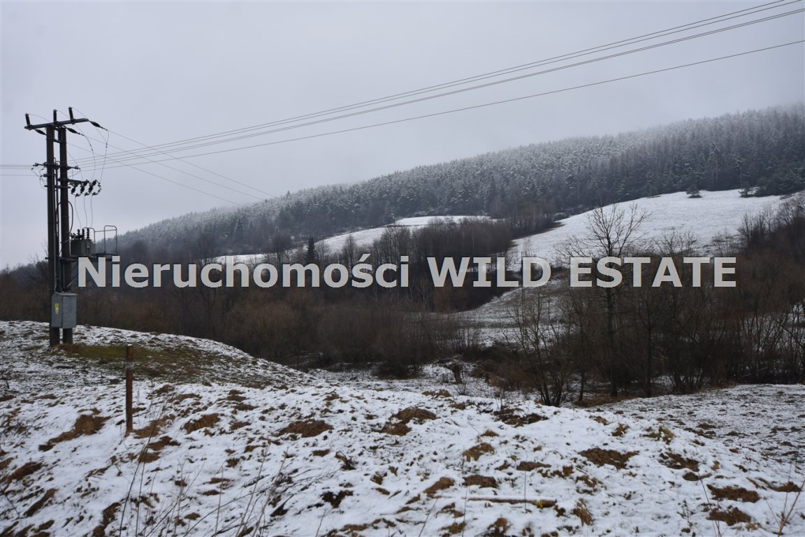 Działka rolna na sprzedaż Olszanica, Paszowa  5376m2 Foto 2