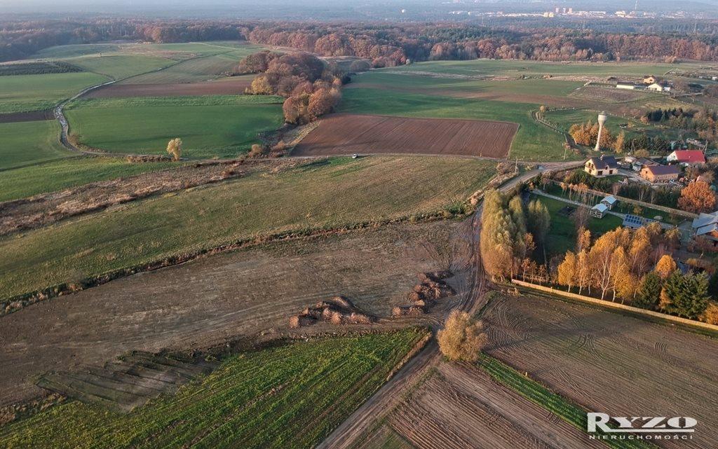 Działka rolna na sprzedaż Przęsocin  12800m2 Foto 9
