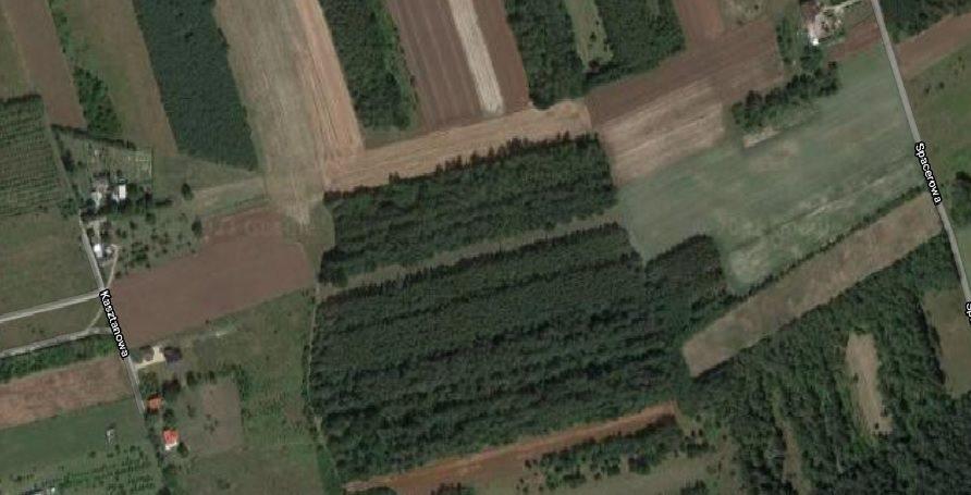 Działka leśna na sprzedaż Latosówka  2800m2 Foto 1