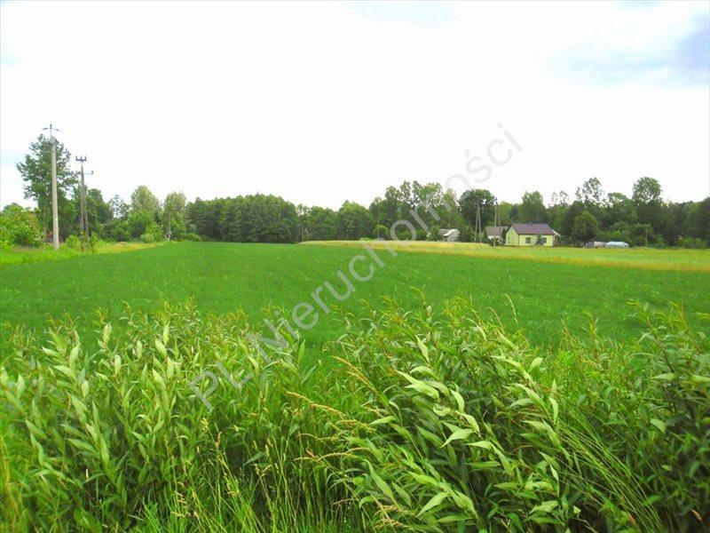 Działka rolna na sprzedaż Lubomin  14500m2 Foto 5
