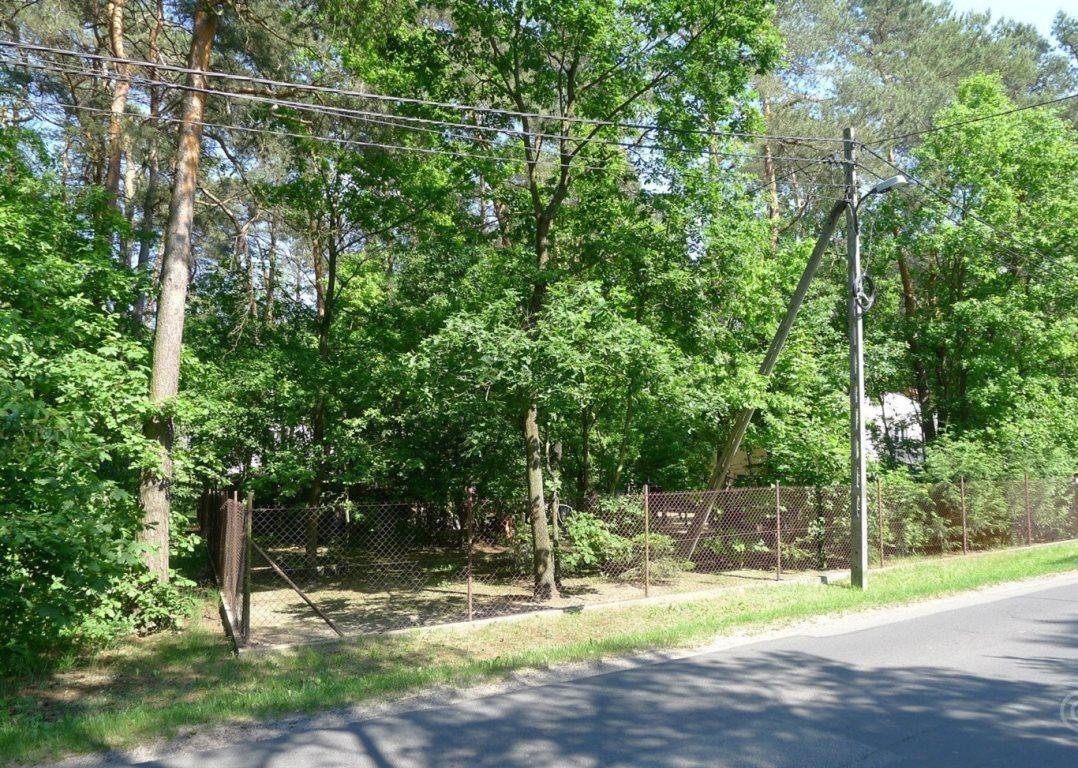 Działka leśna na sprzedaż Jedlicze A  1000m2 Foto 4