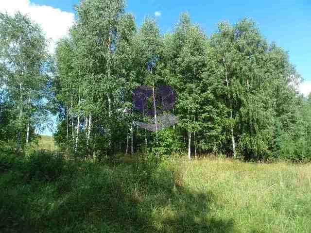 Działka rolna na sprzedaż Studzianki  1611m2 Foto 11