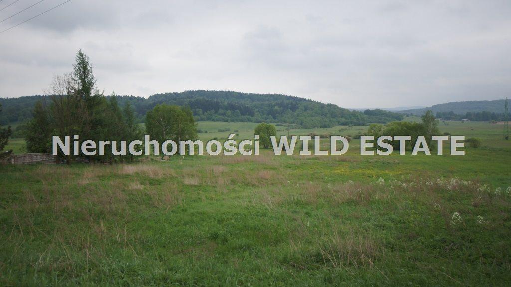 Działka budowlana na sprzedaż Olszanica, Uherce Mineralne  2500m2 Foto 3