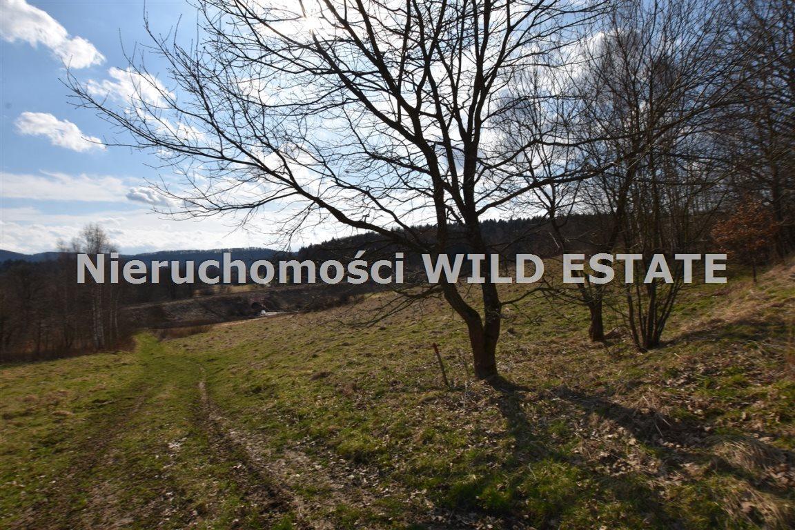 Działka inna na sprzedaż Olszanica, Uherce Mineralne  23516m2 Foto 11