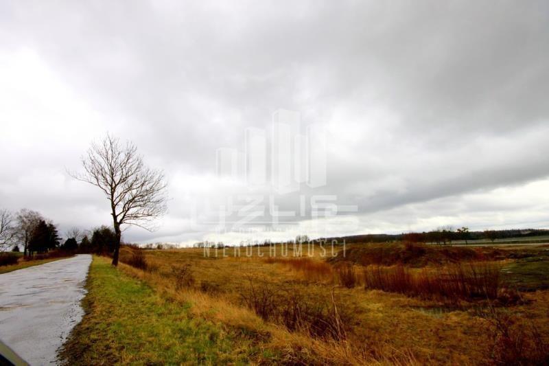 Działka inna na sprzedaż Nowa Wieś  60000m2 Foto 9