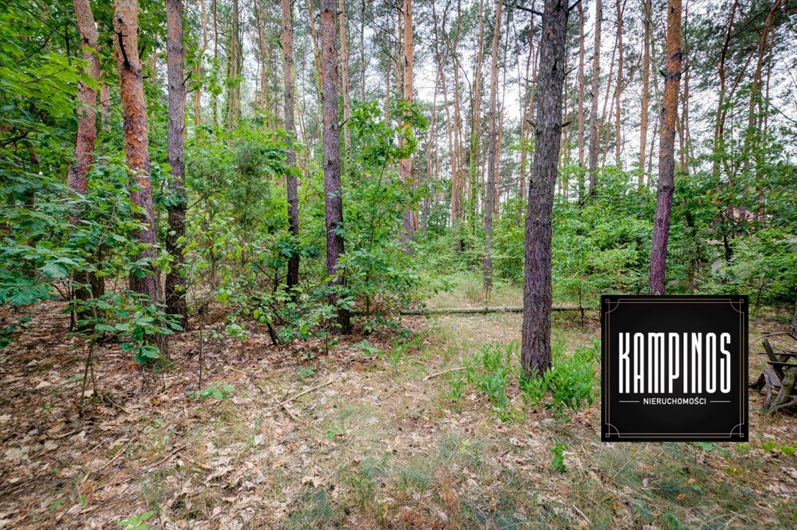 Działka budowlana na sprzedaż Truskaw, Izabelin, oferta 2792  3689m2 Foto 5