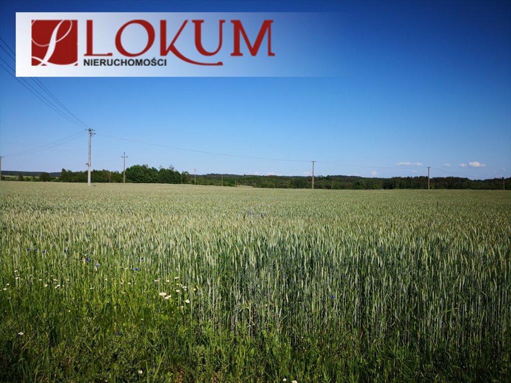Działka rolna na sprzedaż Nowy Wiec  72525m2 Foto 8