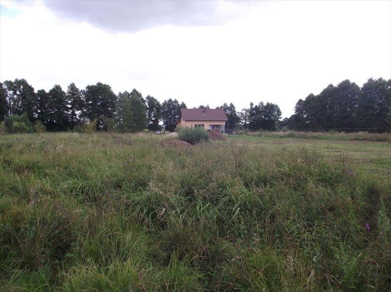 Działka budowlana na sprzedaż Zielona Góra, Ochla  3085m2 Foto 4