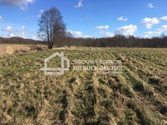 Działka rolna na sprzedaż Leśnice  40000m2 Foto 5