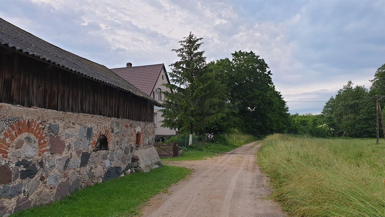 Działka siedliskowa na sprzedaż Grzegorze  14000m2 Foto 6