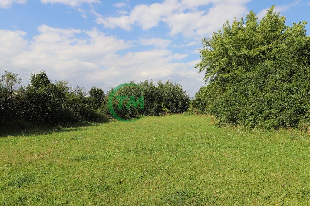 Działka siedliskowa na sprzedaż Piskornia  33721m2 Foto 7
