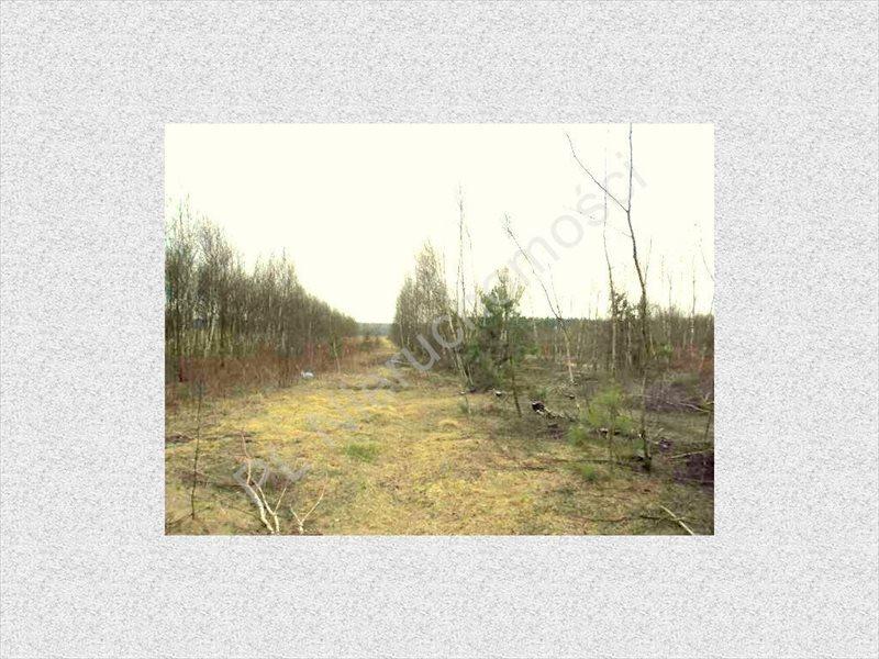 Działka rolna na sprzedaż Stanisławów  8300m2 Foto 1