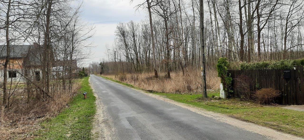 Działka rolna na sprzedaż Oddział  25000m2 Foto 3