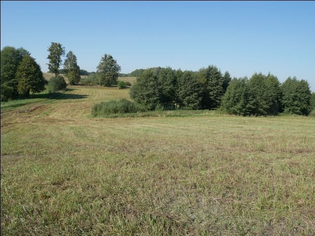 Działka rolna na sprzedaż Skolity  97248m2 Foto 8