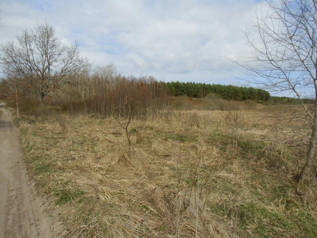 Działka rolna na sprzedaż Tawęcino  136800m2 Foto 8