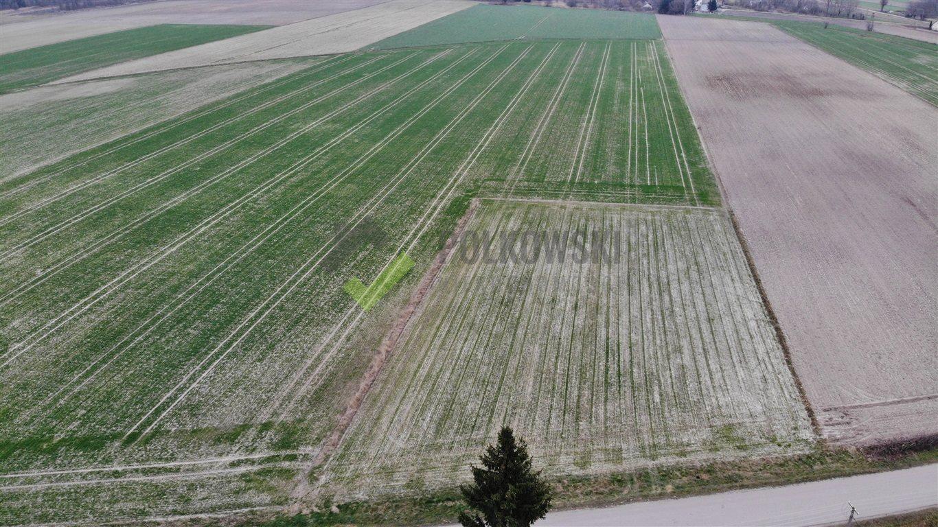 Działka rolna na sprzedaż Strzeszewo  3000m2 Foto 3