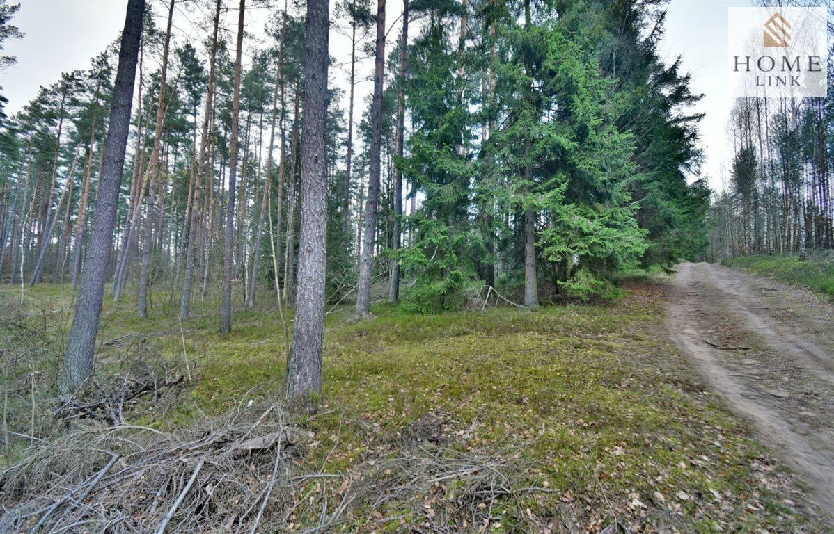 Działka leśna na sprzedaż Warkały  47800m2 Foto 7