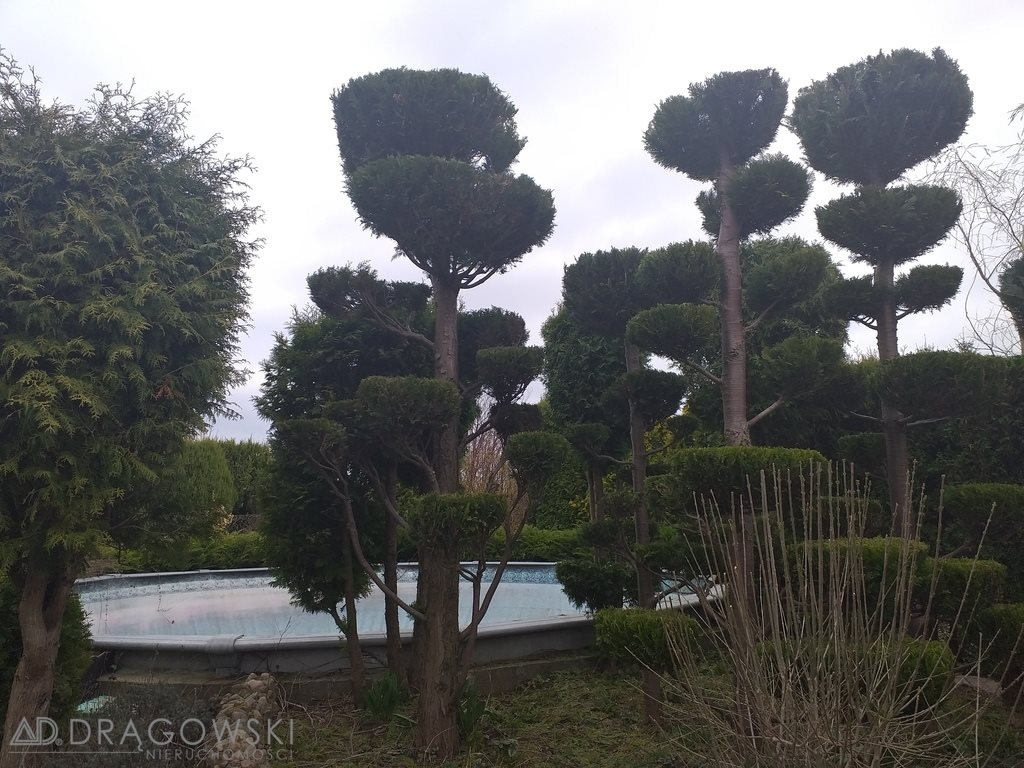 Dom na sprzedaż Habdzin  273m2 Foto 3