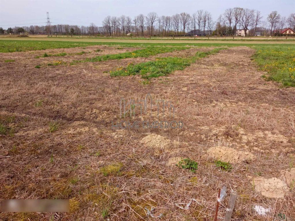 Działka rolna na sprzedaż Międzyrzecze Dolne  810m2 Foto 1