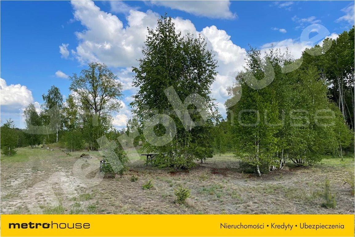 Działka leśna na sprzedaż Chełsty, Różan  80000m2 Foto 9