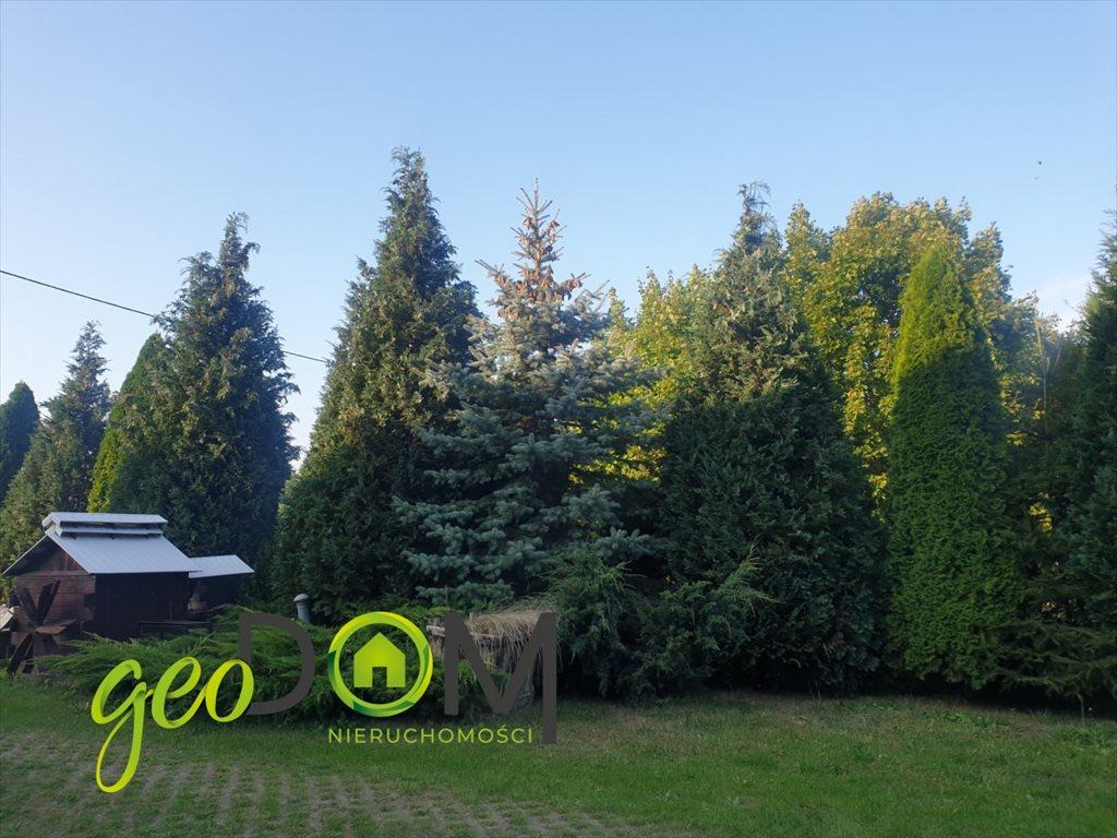 Dom na sprzedaż Terespol  250m2 Foto 4