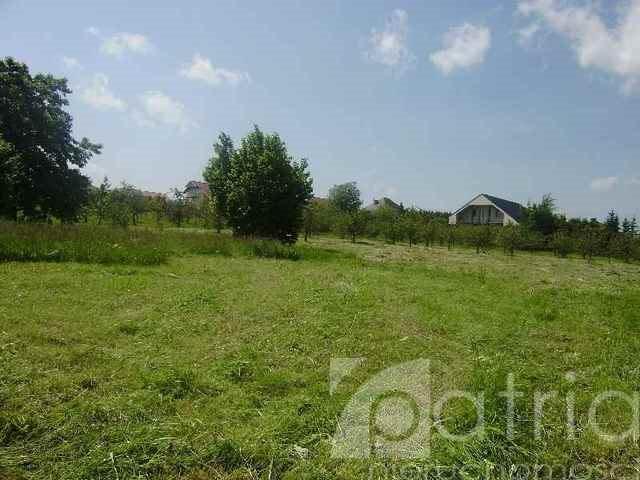 Działka rolna na sprzedaż Siadło Dolne  3000m2 Foto 5