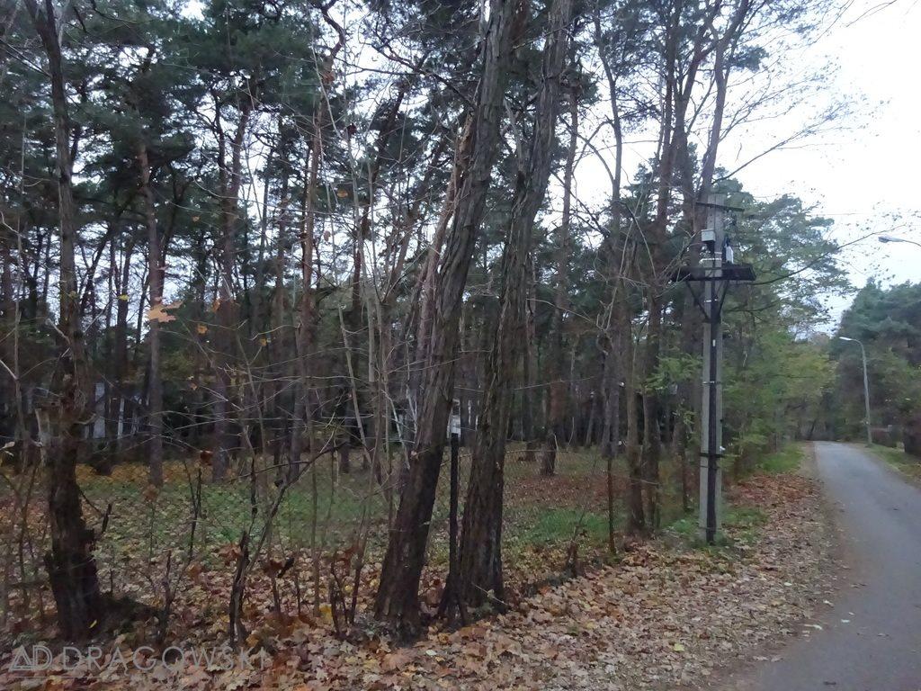Działka leśna z prawem budowy na sprzedaż Konstancin-Jeziorna, Skolimów  2656m2 Foto 1