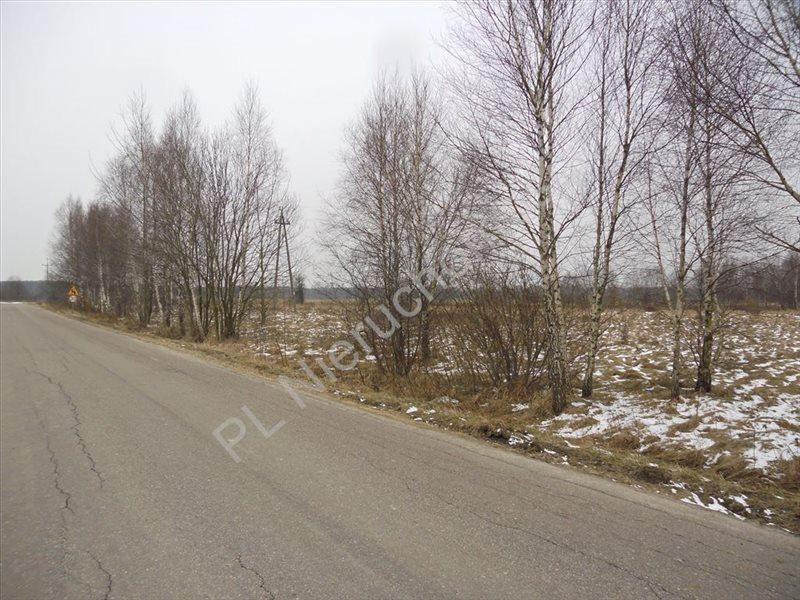 Działka rolna na sprzedaż Tyborów  4591m2 Foto 1