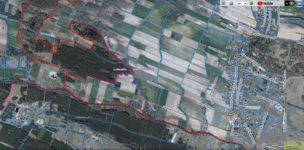 Działka rolna na sprzedaż Zielona Góra, Zatonie-Różana  26987m2 Foto 7