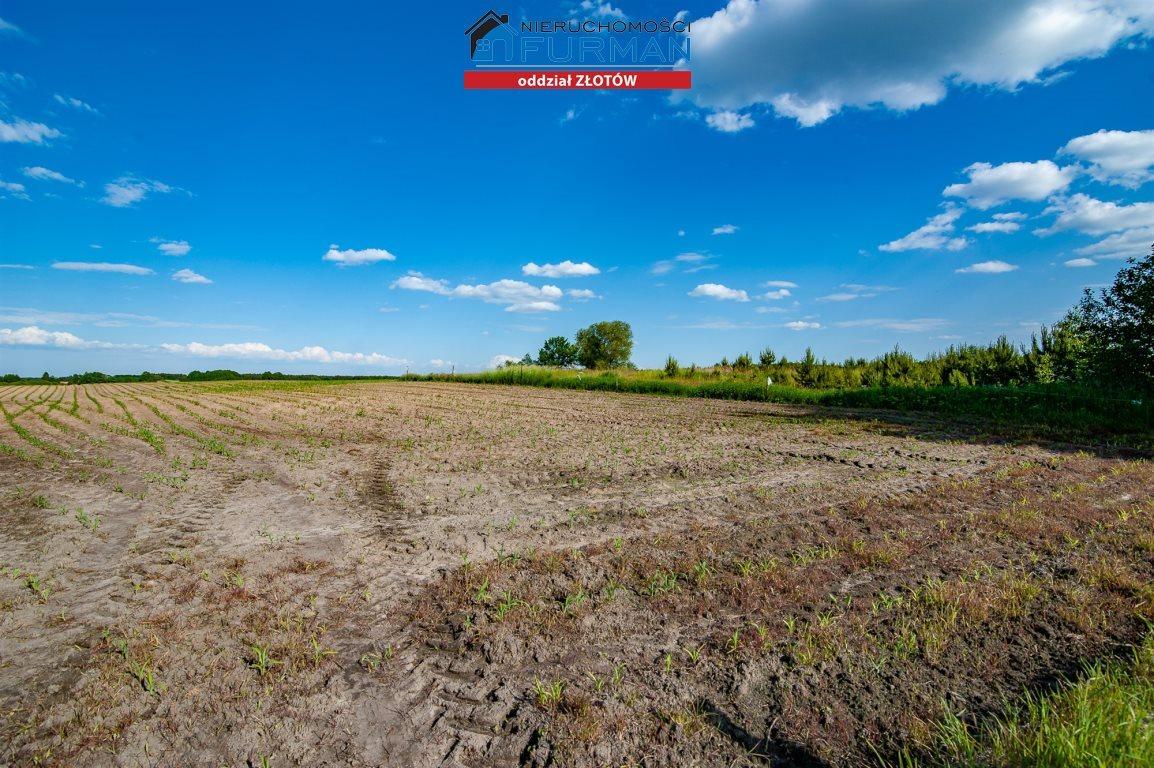 Działka rolna na sprzedaż Witrogoszcz-Kolonia  183634m2 Foto 7