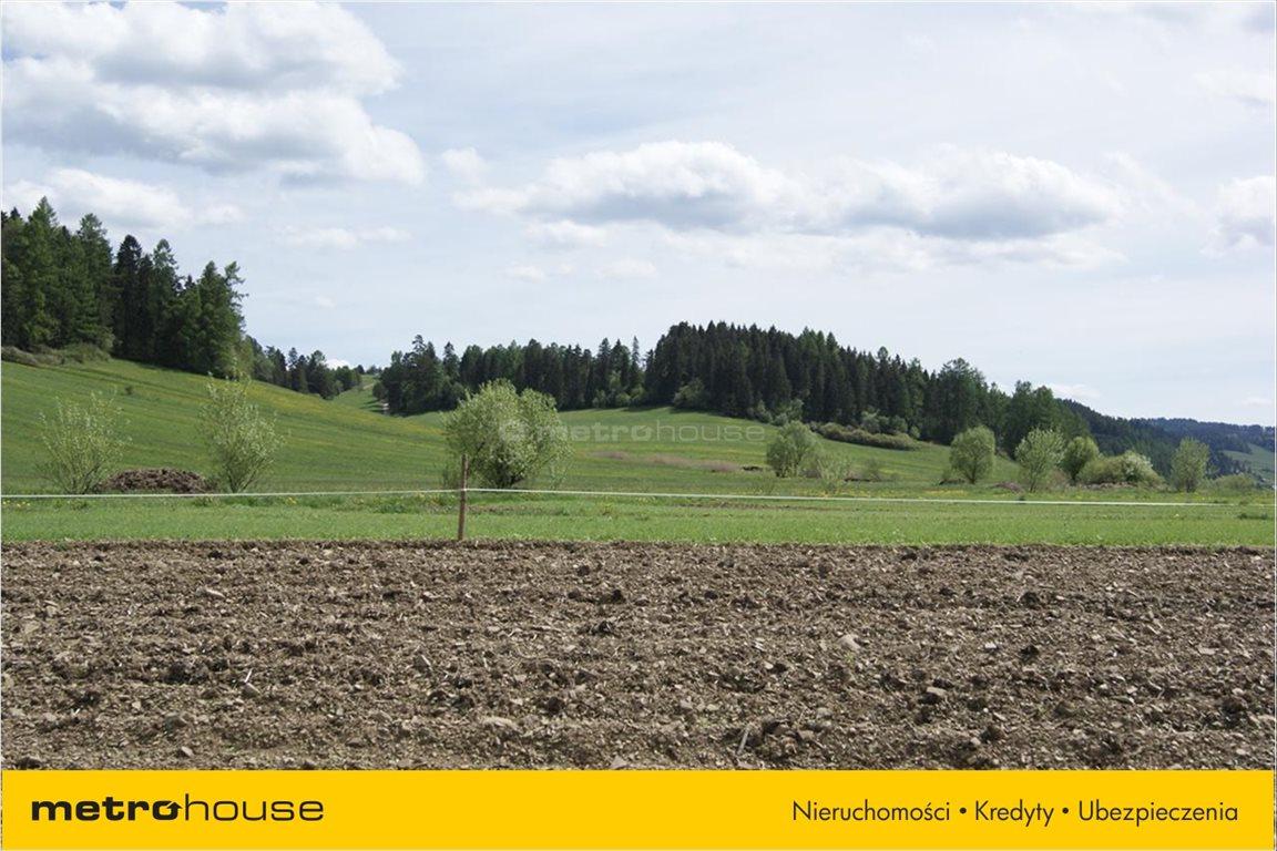 Działka rolna na sprzedaż Niedzica, Łapsze Niżne  1247m2 Foto 5