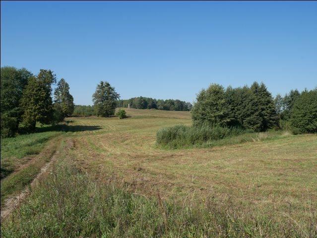 Działka rolna na sprzedaż Skolity  97248m2 Foto 2