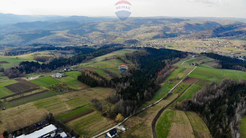 Działka rolna na sprzedaż Mystków  4000m2 Foto 5