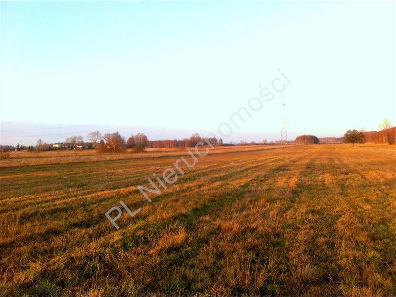 Działka rolna na sprzedaż Tyborów  20000m2 Foto 3