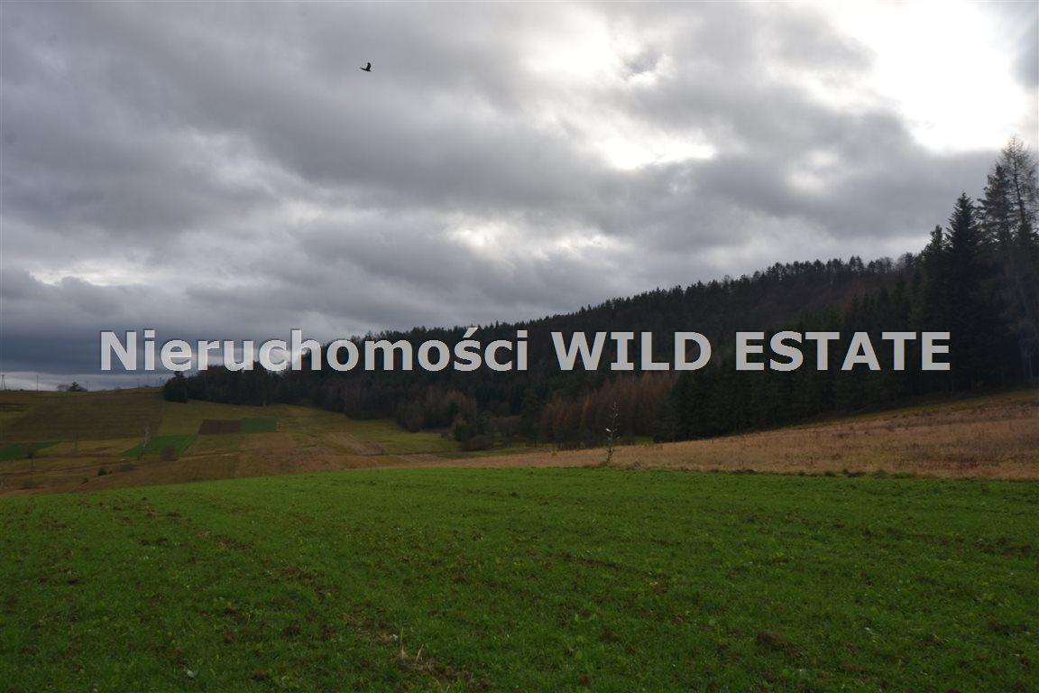 Działka rolna na sprzedaż Solina, Berezka  9520m2 Foto 10