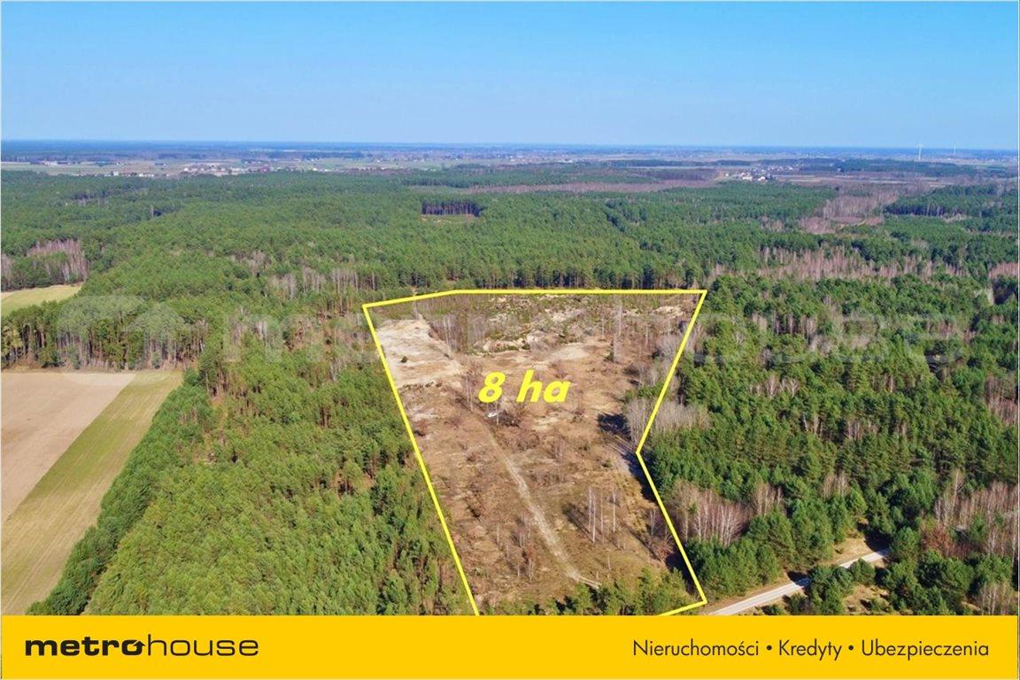 Działka leśna na sprzedaż Chełsty, Różan  80000m2 Foto 7