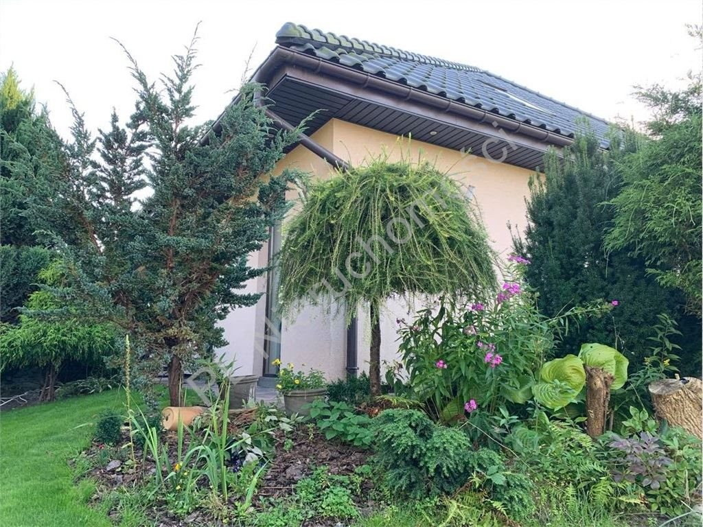 Dom na sprzedaż Zakręt  250m2 Foto 4