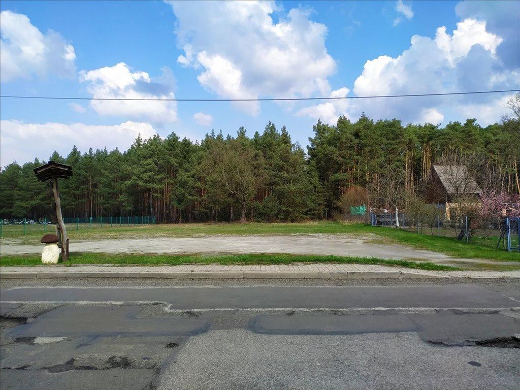 Działka budowlana na sprzedaż Czeszów, Zawonia  3168m2 Foto 4