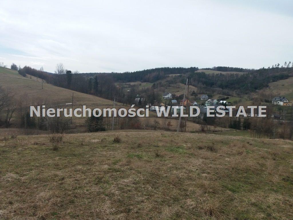 Działka rolna na sprzedaż Solina, Wola Matiaszowa  22400m2 Foto 1