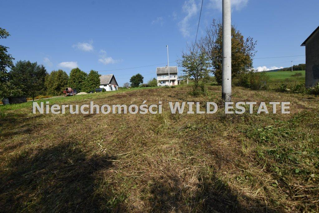 Działka inna na sprzedaż Lesko, Manasterzec  4226m2 Foto 5