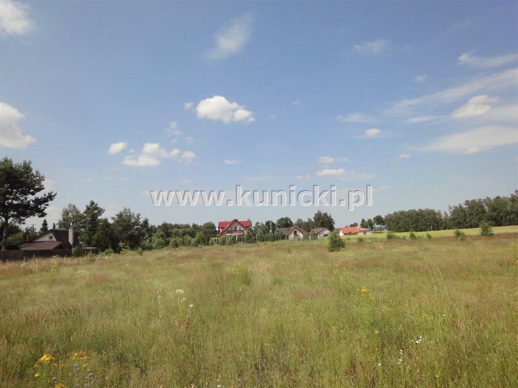 Działka budowlana na sprzedaż Przyborowice Górne  6250m2 Foto 2