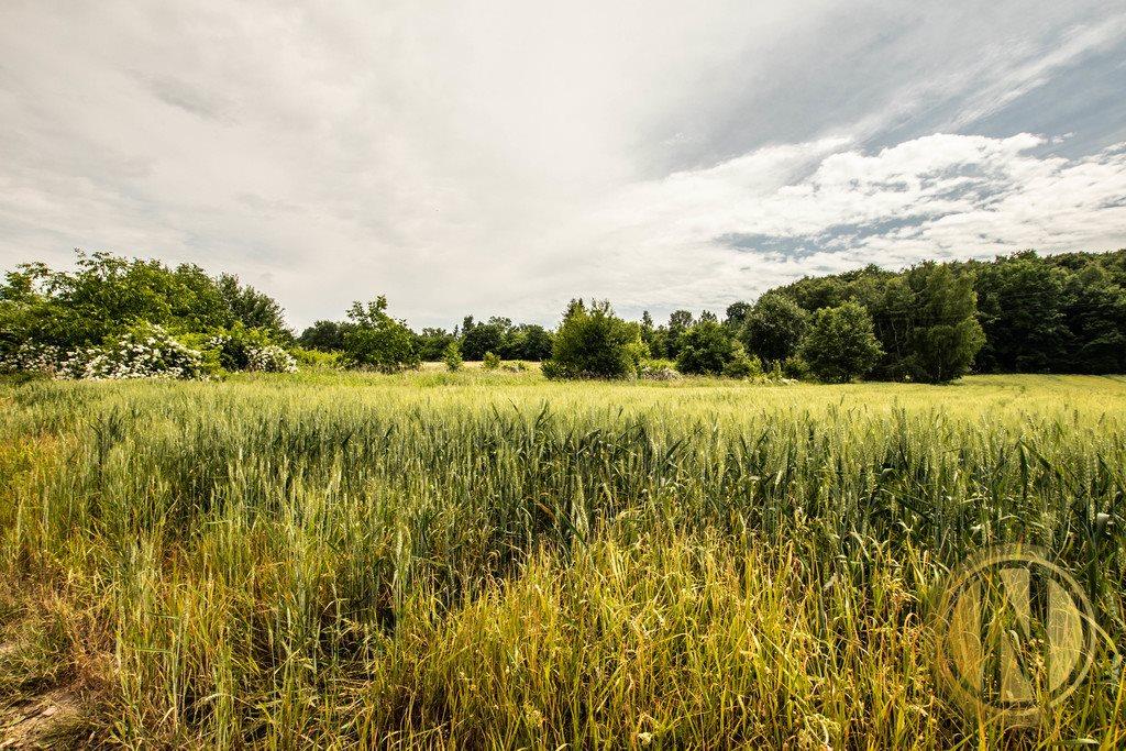 Działka rolna na sprzedaż Kraków, Wola Justowska, Wola Justowska  3396m2 Foto 3