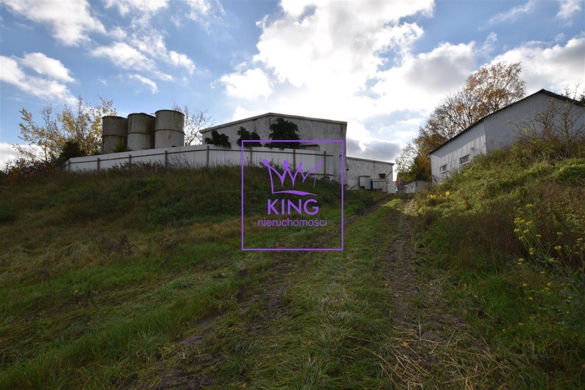 Dom na sprzedaż Motaniec  420m2 Foto 5