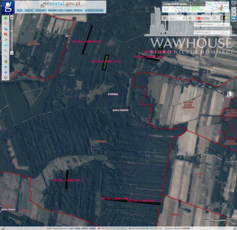 Działka leśna na sprzedaż Czernice  34700m2 Foto 5