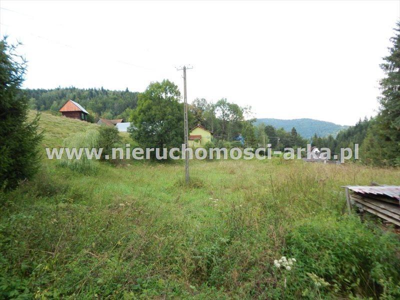 Działka budowlana na sprzedaż Szczawa  2700m2 Foto 1