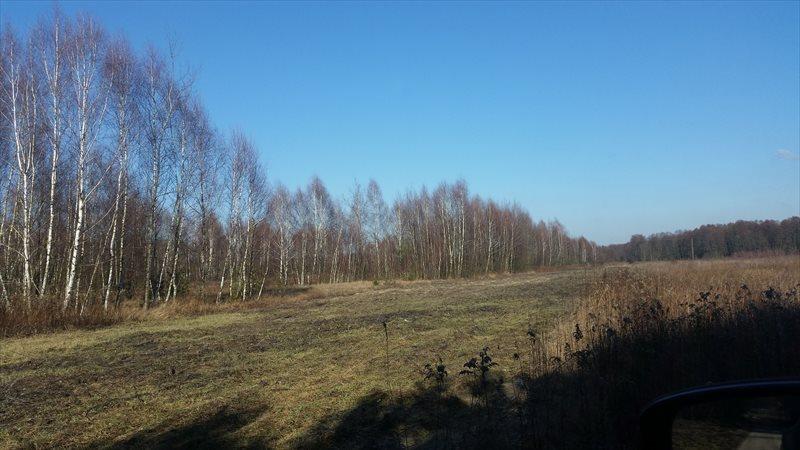Działka rolna na sprzedaż Mariew  1500m2 Foto 12