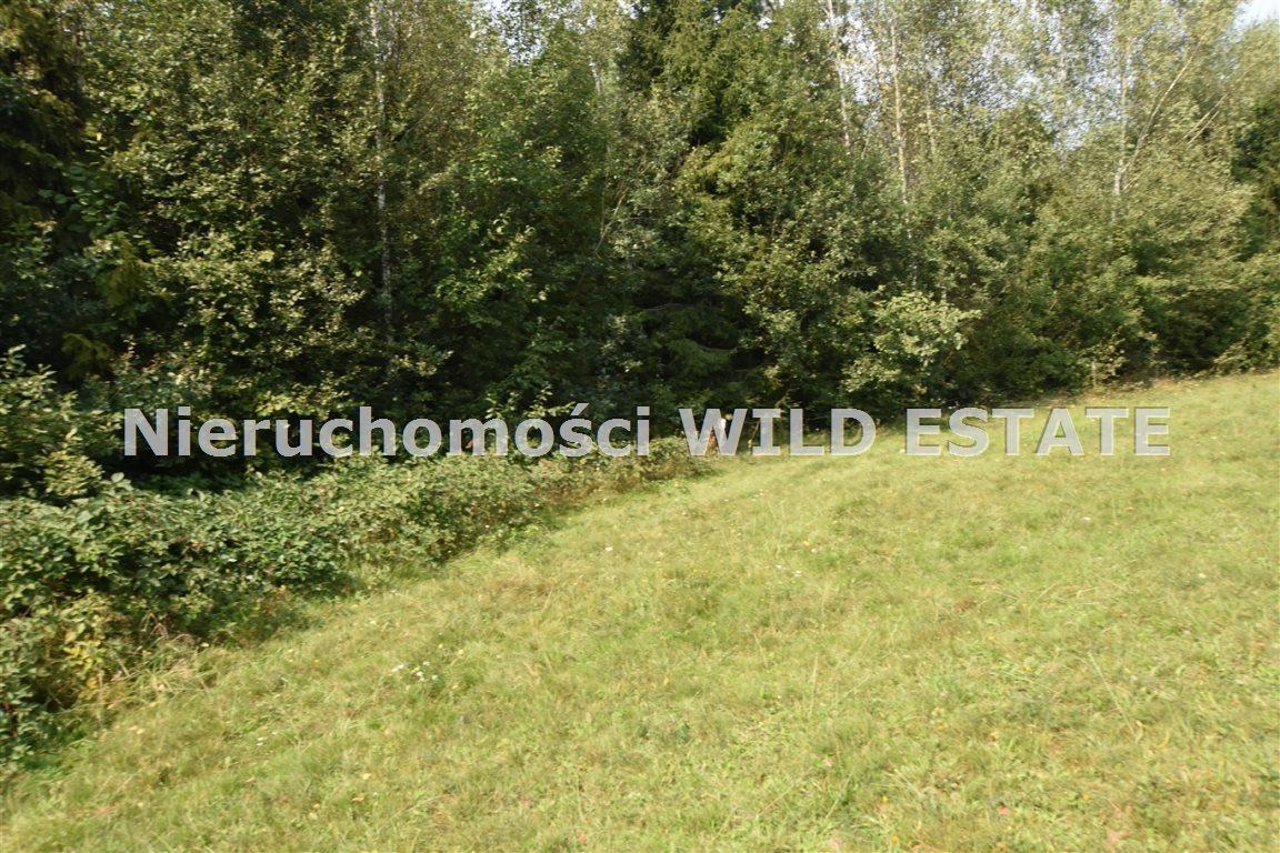 Działka rolna na sprzedaż Lesko, Weremień  3177m2 Foto 2