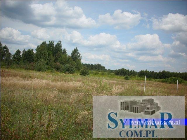 Działka budowlana na sprzedaż Góra Kalwaria, Krzaki Czaplonkowskie, Główna  1000m2 Foto 4