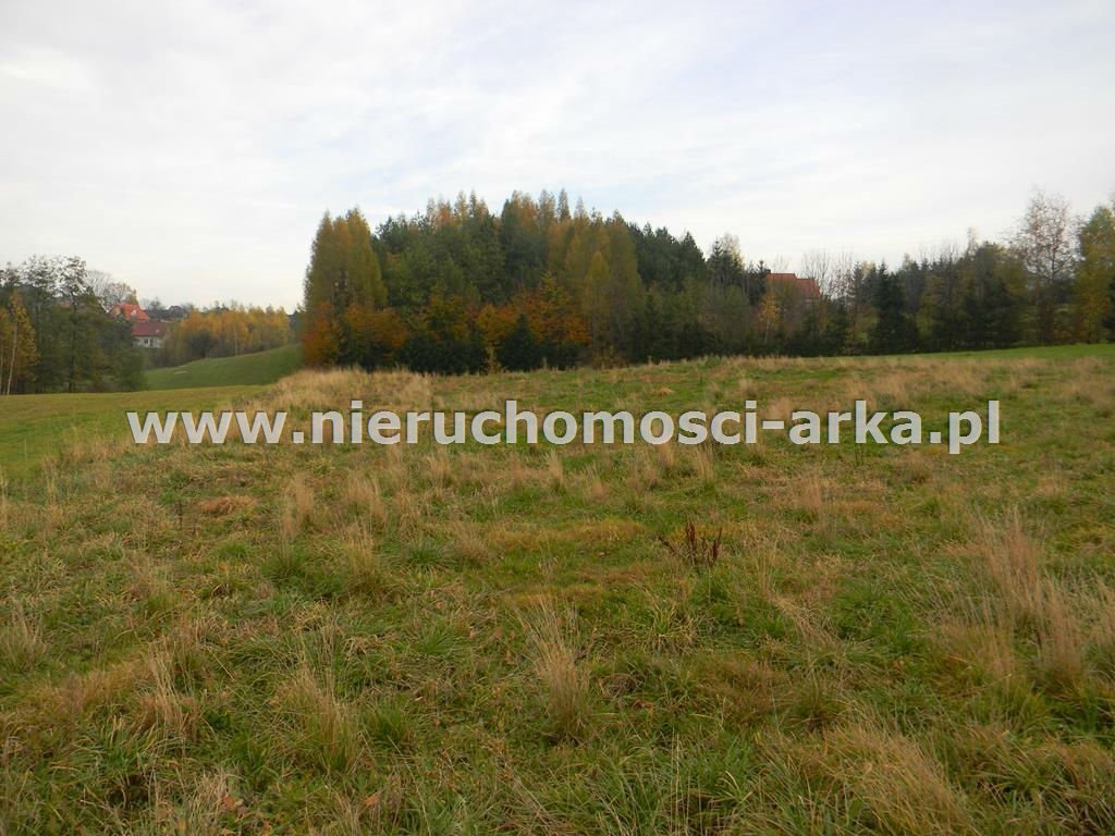 Działka budowlana na sprzedaż Żegocina  3100m2 Foto 1
